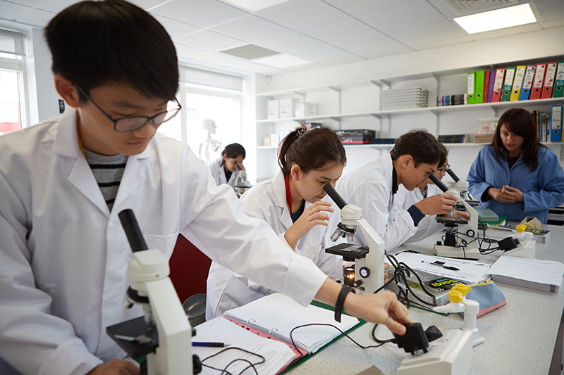Students in Biology class at Abbey College Cambridge