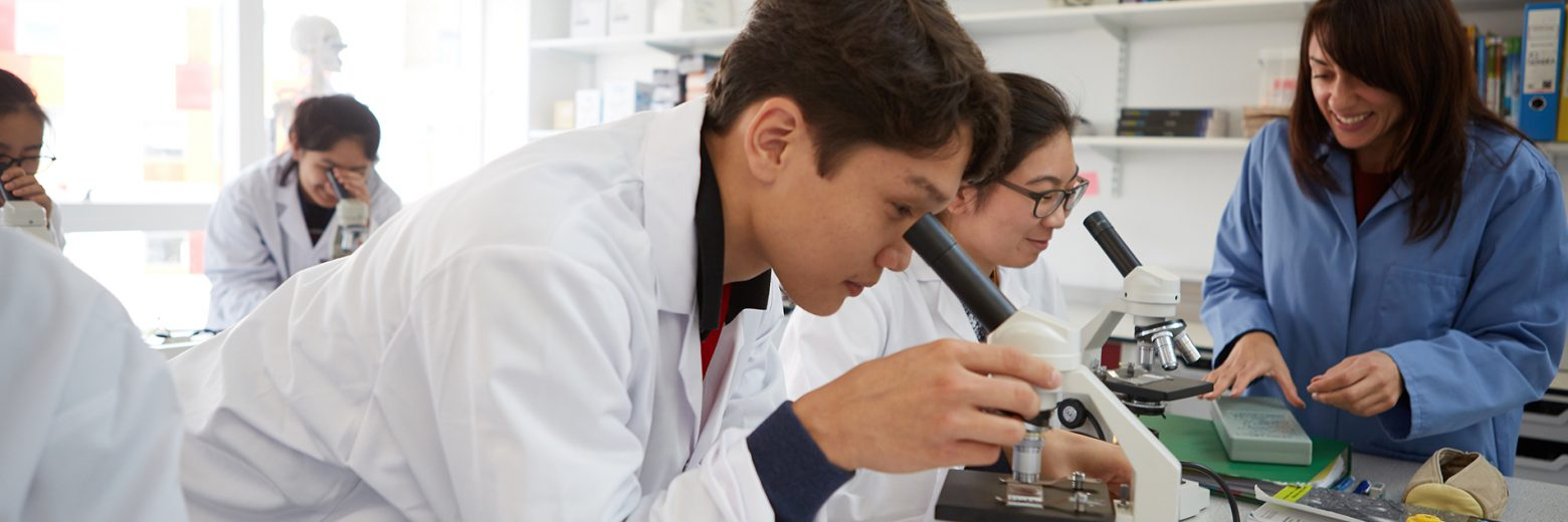 Teacher And Student In Chemistry Class At Abbey College Cambridge